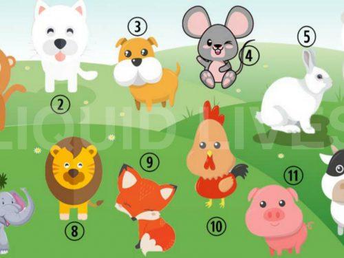 Scegli un animale, scopri chi sei e come ti vedono gli altri