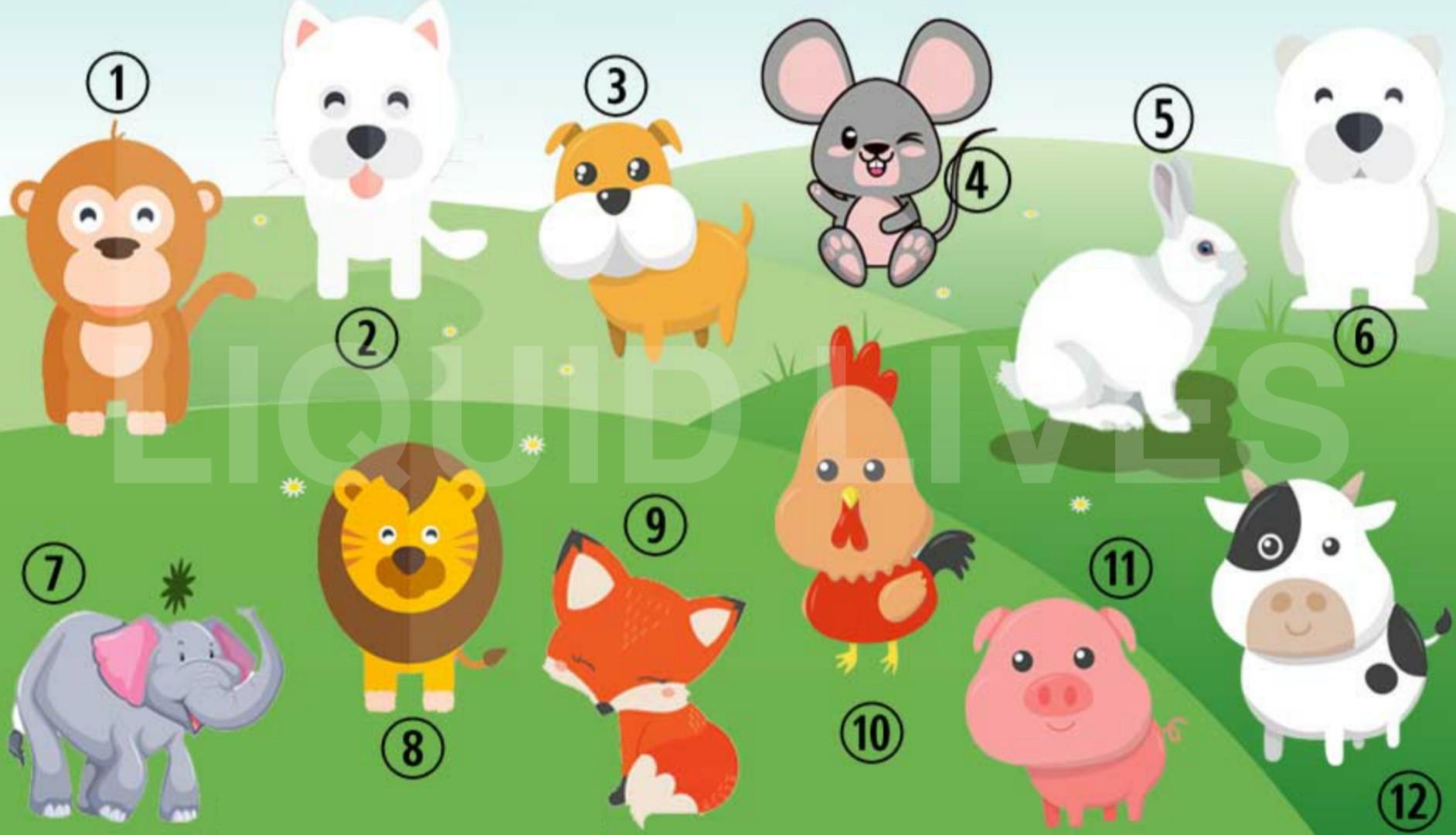 scegli un animale